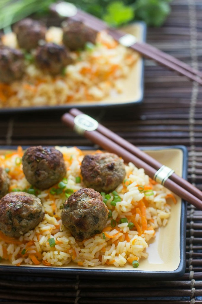 Baked Asian Turkey Meatballs & Carrot Rice - Dinner at the Zoo