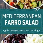 Farro Salad Recipe | Healthy Salad #salad #healthy #cleaneating #farro #dinner #dinneratthezoo