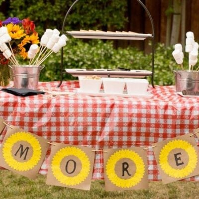 Summer S'mores Bar Party