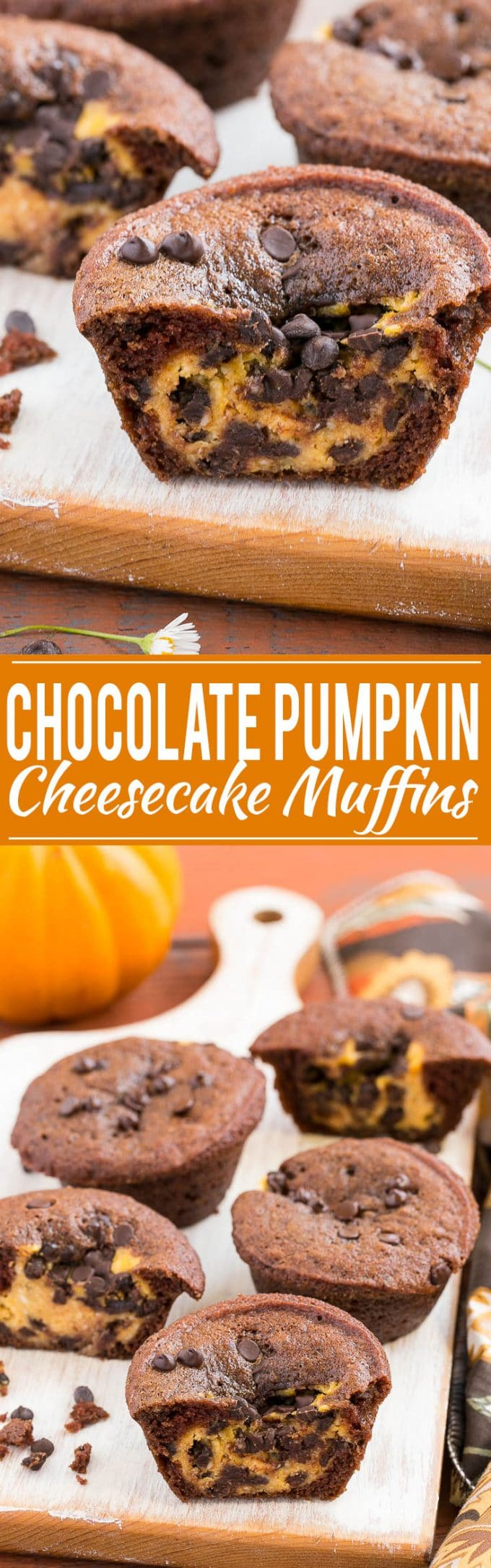 Chocolate Pumpkin Cheesecake Muffin Recipe | Chocolate Pumpkin Muffins | Chocolate Pumpkin Cheesecake Muffins