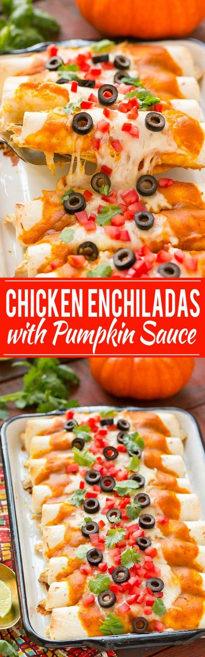 Chicken Enchiladas with Pumpkin Sauce Recipe | Pumpkin Chicken Enchiladas | Pumpkin Sauce | Chicken Enchiladas | Best Chicken Enchiladas