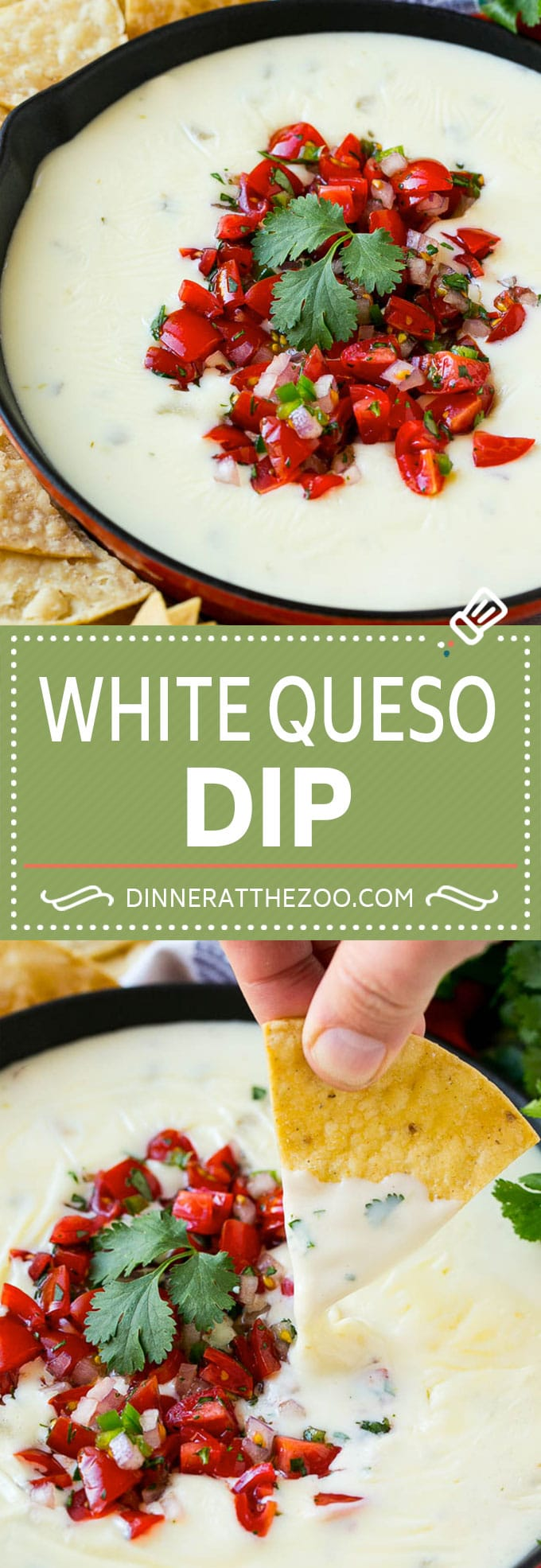 White Queso Dip Recipe | Mexican Cheese Dip | Queso Sauce #queso #dip #appetizer #cheese #dinneratthezoo