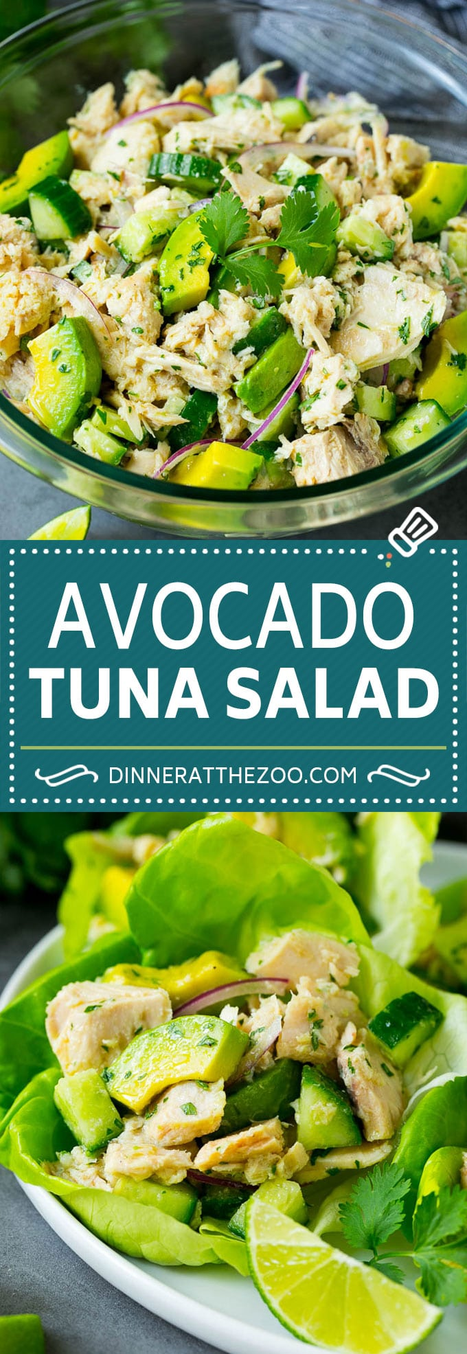 Avocado Tuna Salad Dinner At The Zoo