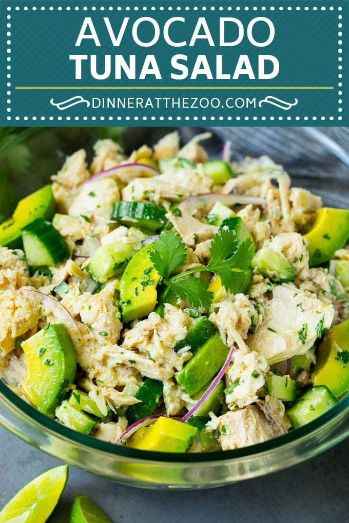 Avocado Tuna Salad Recipe | Avocado Salad #avocado #tuna #salad #cucumber #healthy #lunch #dinneratthezoo