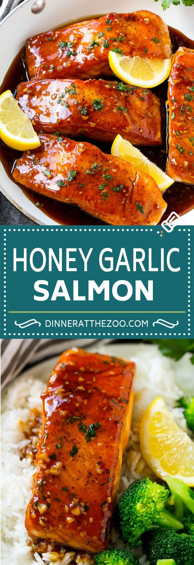 Honey Garlic Salmon Recipe | Asian Salmon Recipe | Healthy Salmon Recipe #salmon #fish #seafood #healthy #dinner #dinneratthezoo