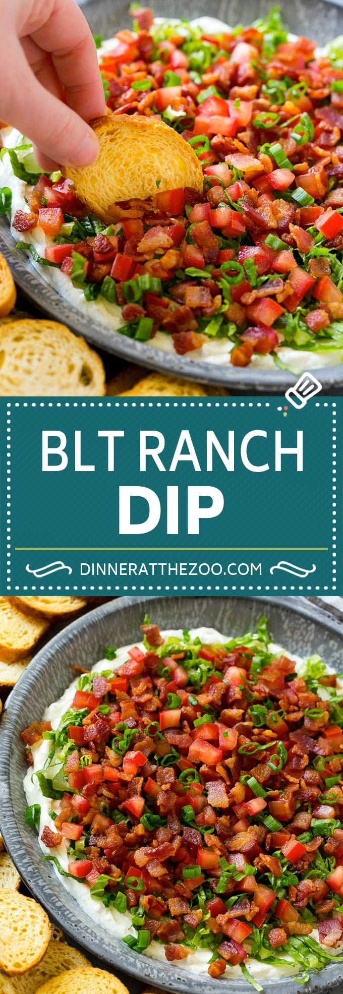 BLT Dip Recipe | Bacon Dip Recipe | Ranch Dip #dip #ranch #bacon #lettuce #tomato #appetizer #dinneratthezoo