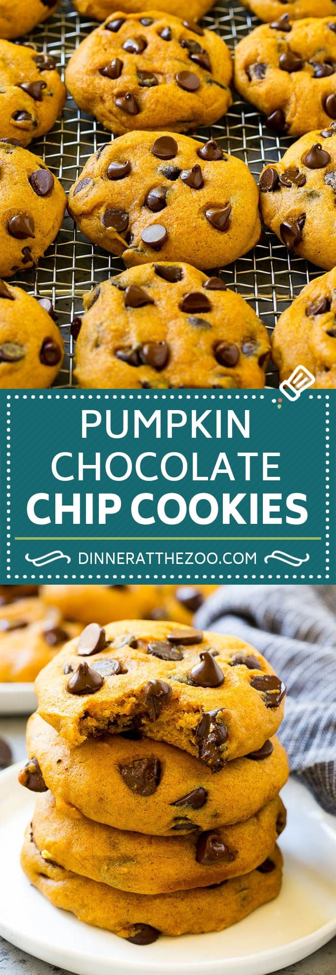 Pumpkin Chocolate Chip Cookies Recipe | Pumpkin Cookies | Pumpkin Chocolate Cookies #pumpkin #cookies #chocolate #baking #fall #dinneratthezoo #dessert