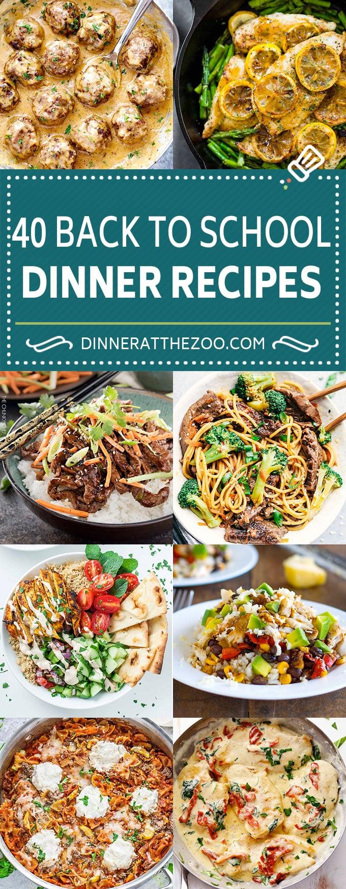 40 Back to School Dinner Recipes | Easy Dinner Recipes | One Pot Meals #pasta #chicken #dinner #backtoschool #dinneratthezoo