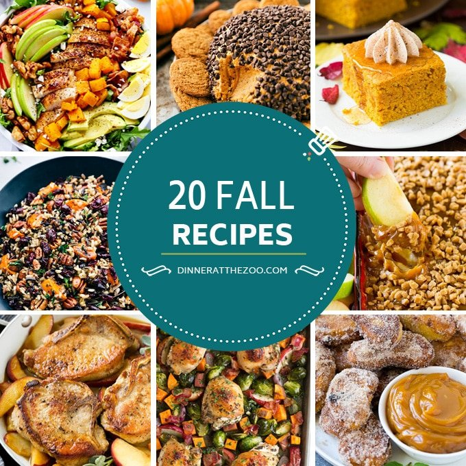 A comprehensive list of fall recipes including dinners, salads, pumpkin recipes, cookies, cakes and more.