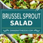 Brussels Sprout Salad Recipe | Shredded Brussels Sprouts Salad | Fall Salad #salad #brusselssprouts #bacon #thanksgiving #pomegranate #apple #dinner #dinneratthezoo