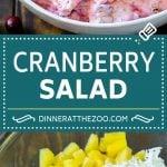 Cranberry Salad Recipe | Fluff Salad #cranberry #salad #fall #dinner #dinneratthezoo #thanksgiving