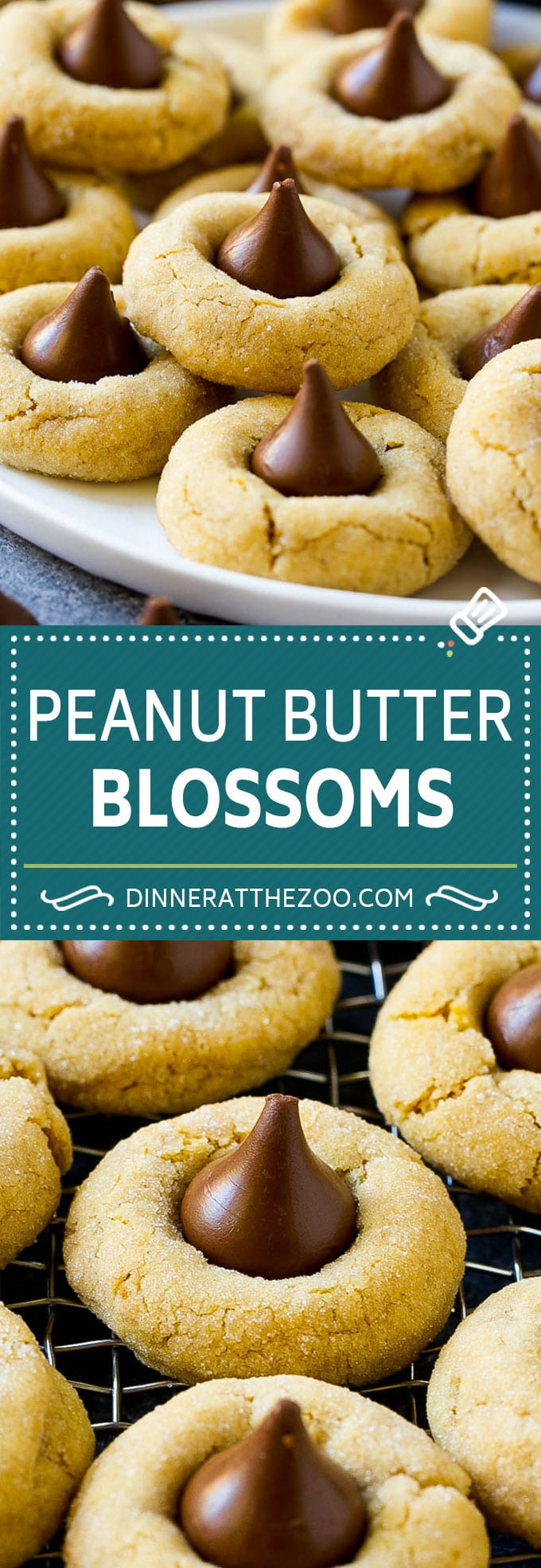 Peanut Butter Blossoms Recipe | Hershey Kiss Cookies | Chocolate Peanut Butter Cookies #cookies #peanutbutter #chocolate #dessert #baking #christmas #christmascookies #dinneratthezoo