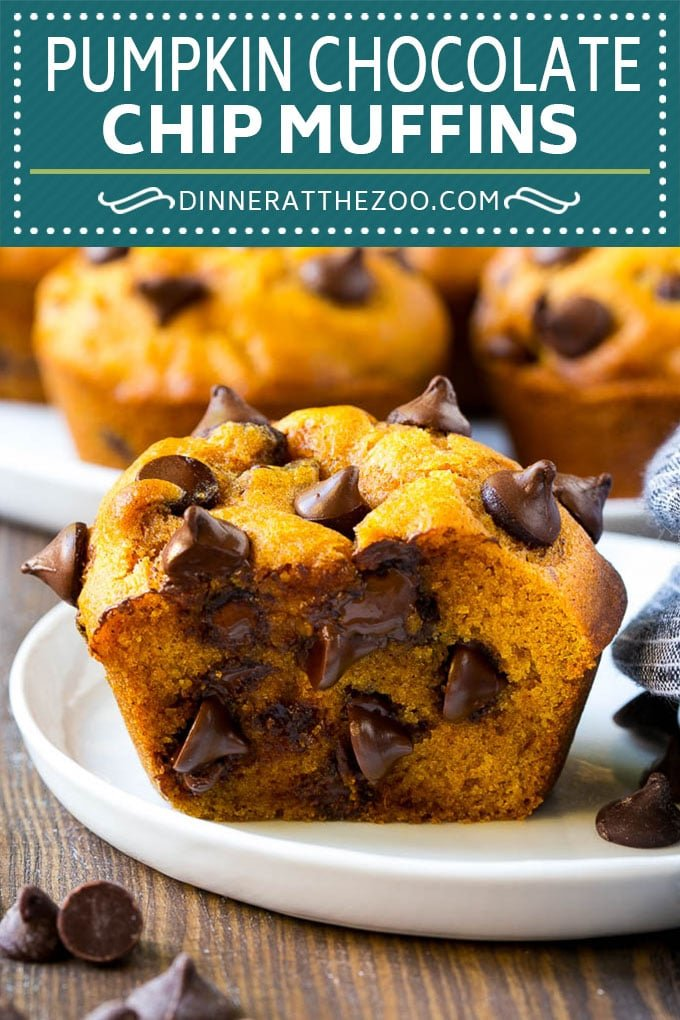 Pumpkin Chocolate Chip Muffins Recipe | Pumpkin Muffins | Chocolate Pumpkin Muffins #muffins #pumpkin #fall #chocolate #dessert #snack #dinneratthezoo