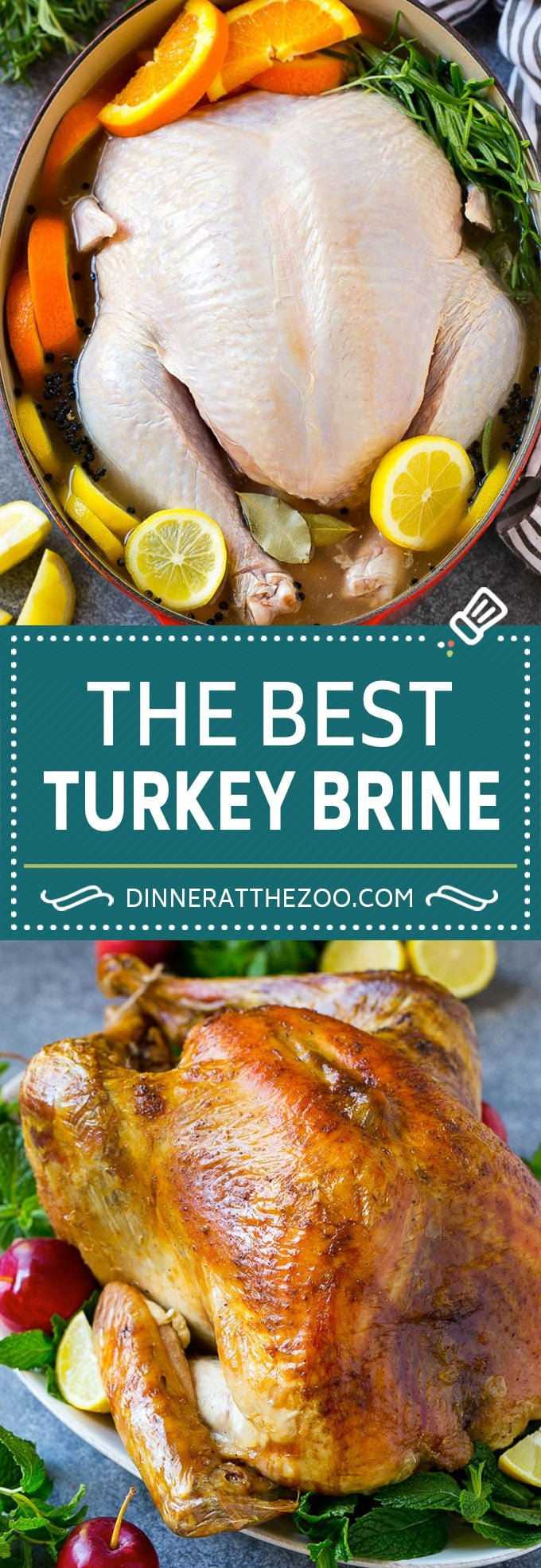Turkey Brine Recipe | Brined Turkey | Roasted Turkey | Thanksgiving Turkey #turkey #thanksgiving #fall #brine #dinner #christmas #dinneratthezoo