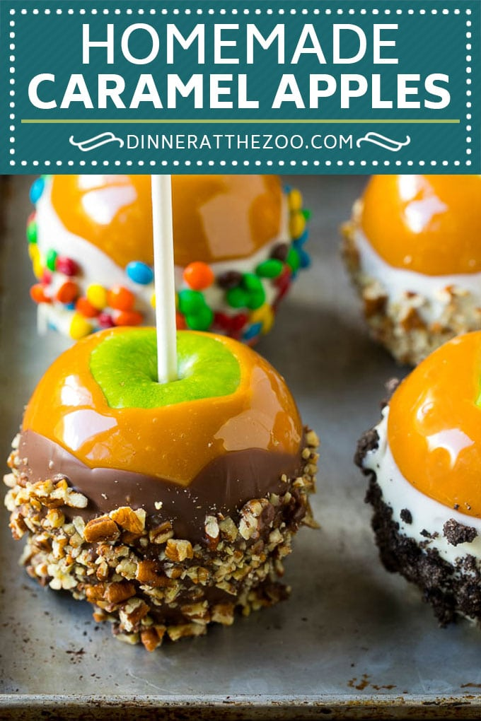 Caramel Apples Recipe | Dipped Apples | Apple Dessert #apples #caramel #chocolate #dessert #fall #dinneratthezoo