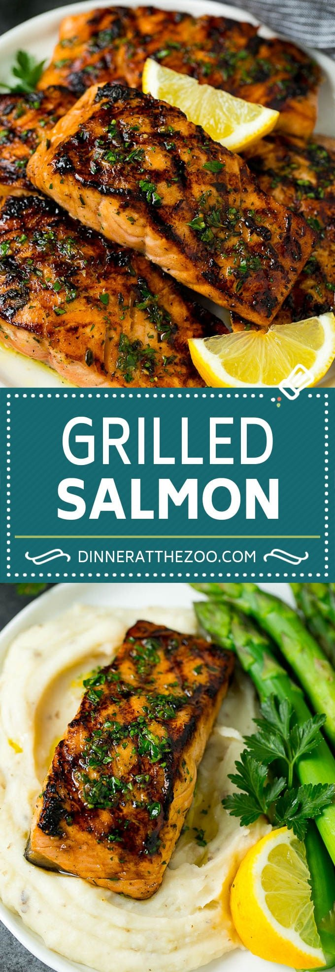 Grilled Salmon Recipe | Marinated Salmon | Healthy Salmon Recipe #salmon #grilling #seafood #marinade #dinner #dinneratthezoo