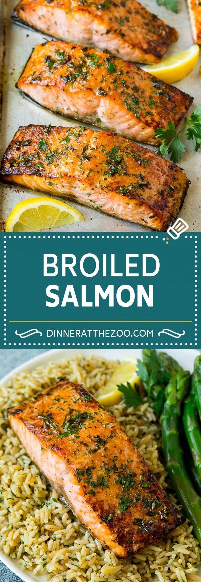 Broiled Salmon Recipe | Healthy Salmon Recipe #salmon #garlic #seafood #dinner #dinneratthezoo