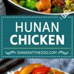 Hunan Chicken Recipe | Chicken Stir Fry | Spicy Chicken #chicken #stirfry #broccoli #dinner #spicy #dinneratthezoo