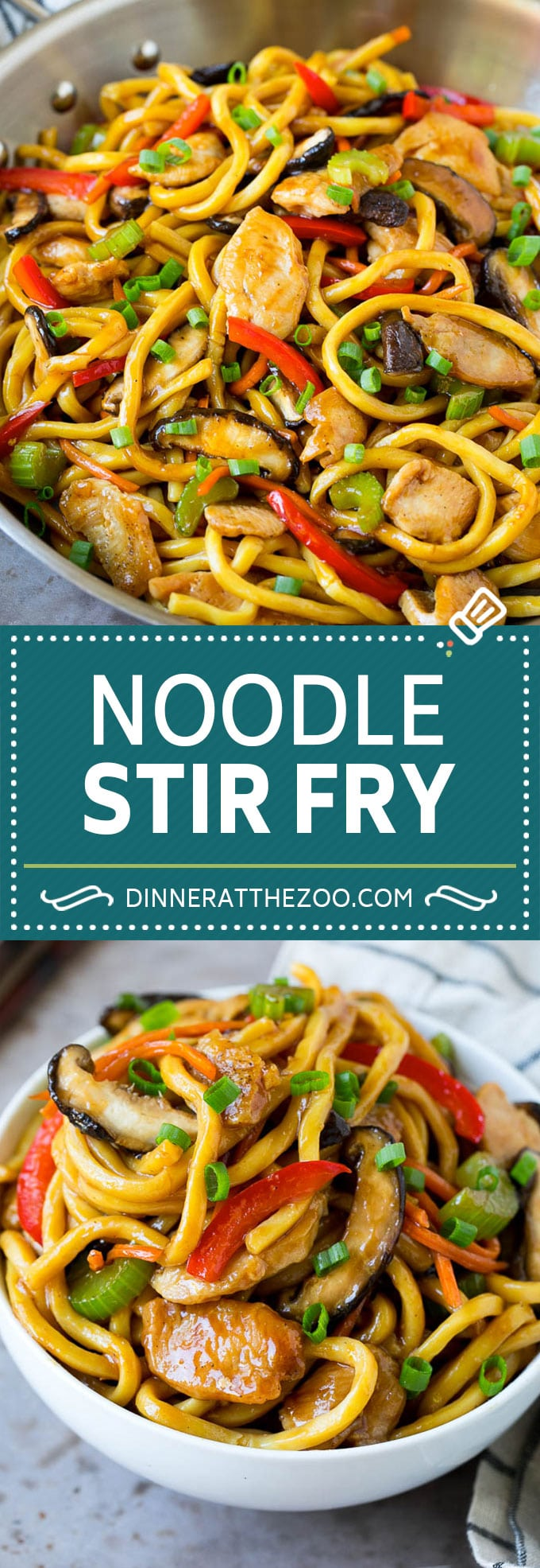 Stir Fry Noodles With Chicken Dinner At The Zoo