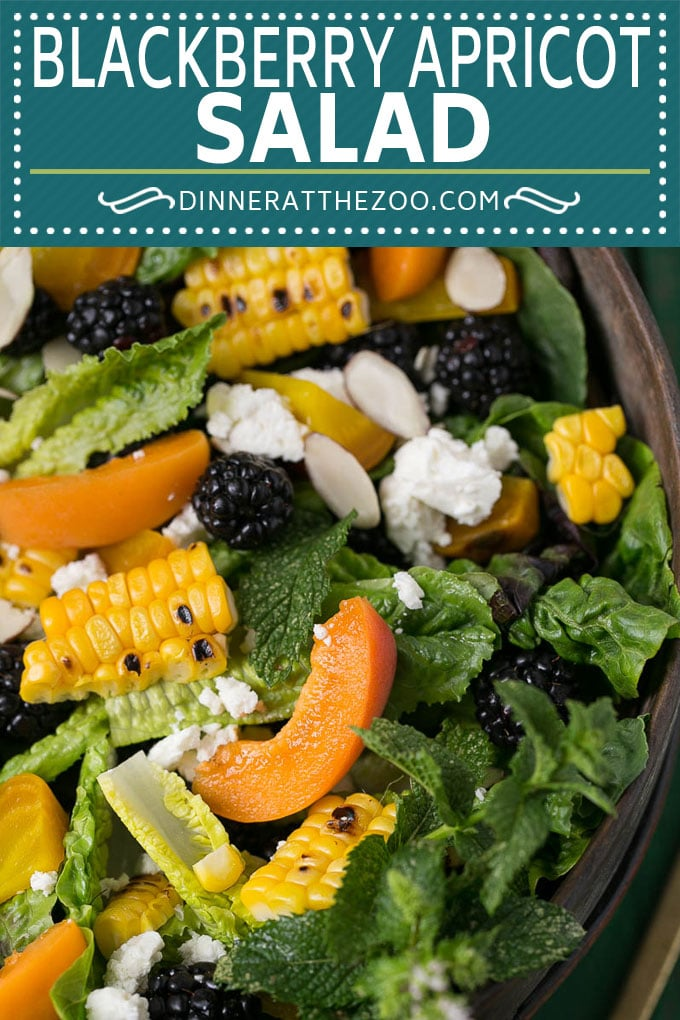 Blackberry Salad Recipe | Summer Salad #salad #blackberries #apricot #corn #dinner #healthy #dinneratthezoo