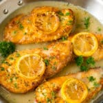 Chicken francese in a white wine sauce, garnished with lemon slices.